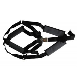 5-Point harness complete
