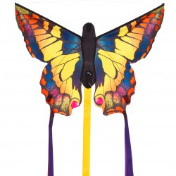 Butterfly Kite R Display
