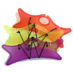 Winders Prism