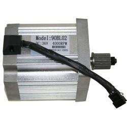 Skatey 1300 Motor