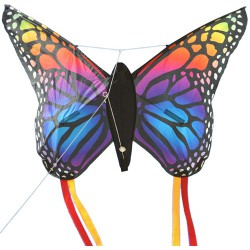 Butterfly kite Rainbow