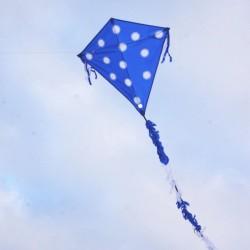 Eddy Dots Blue