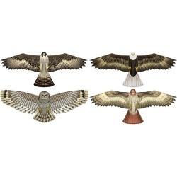 Ass. Birds of Prey 12 st.